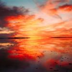 Richard Misrach – צלם נוף בעל אמירה